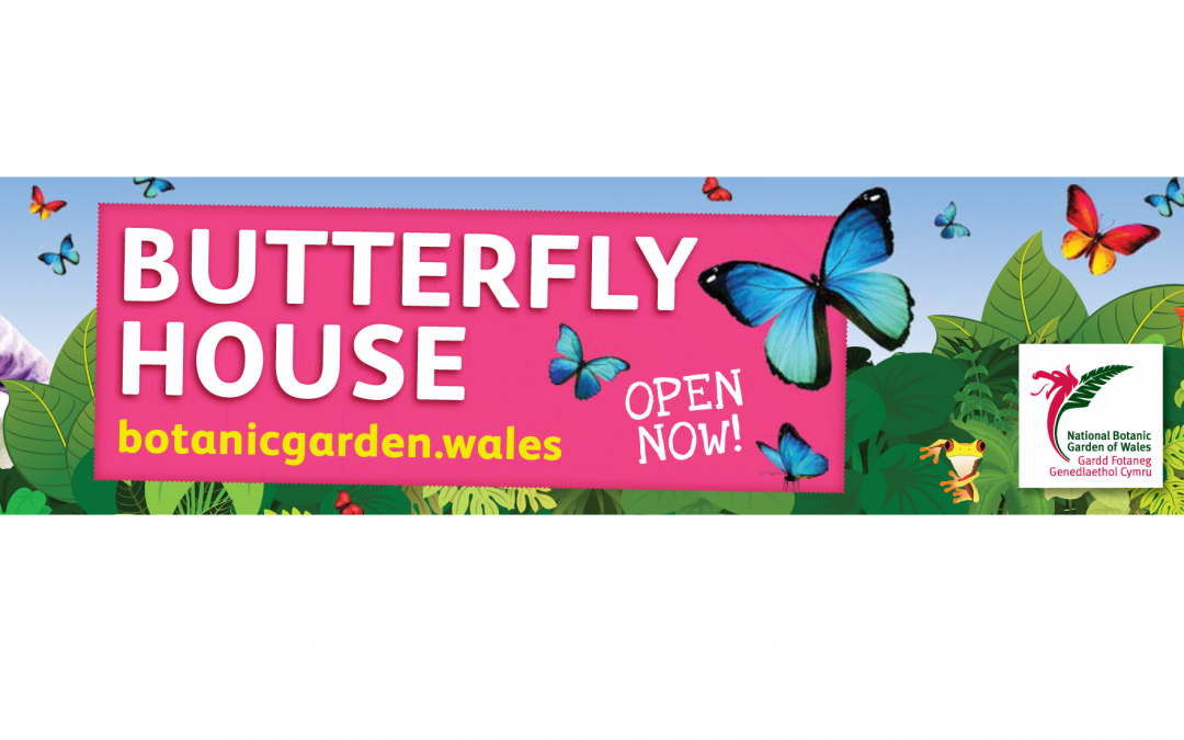 National Botanic Garden of Wales Have Launched Their Summer Campaign