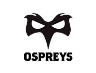 ospreys rugby marketing